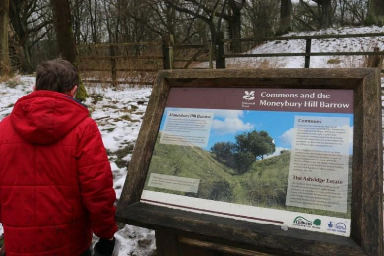Exploring the Ashridge Estate for the first time