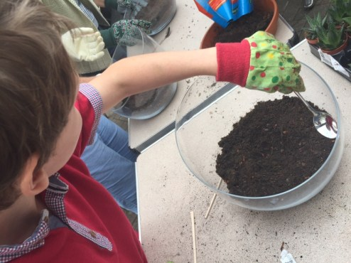 Creative Terrarium Workshop with Hillier Garden Centre in Banbury