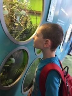 Exploring ZSL London Zoo 47
