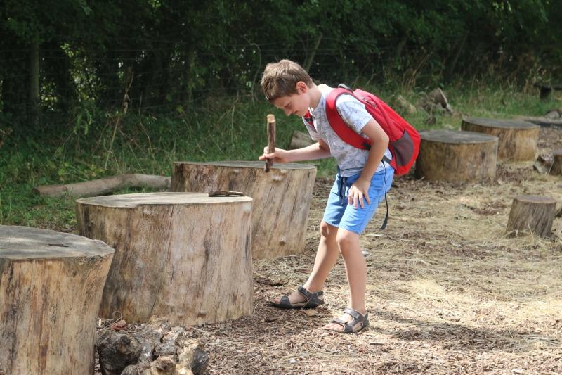 Knock on wood - My Sunday Photo 120818