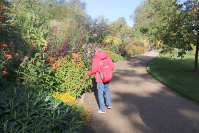 Fun in the sun at Oxford Botanic Garden and beyond