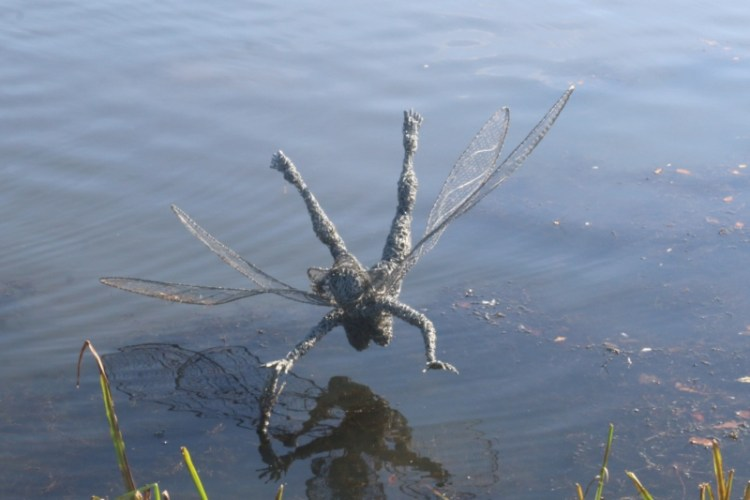 Water Fairy - My Sunday Photo 281018