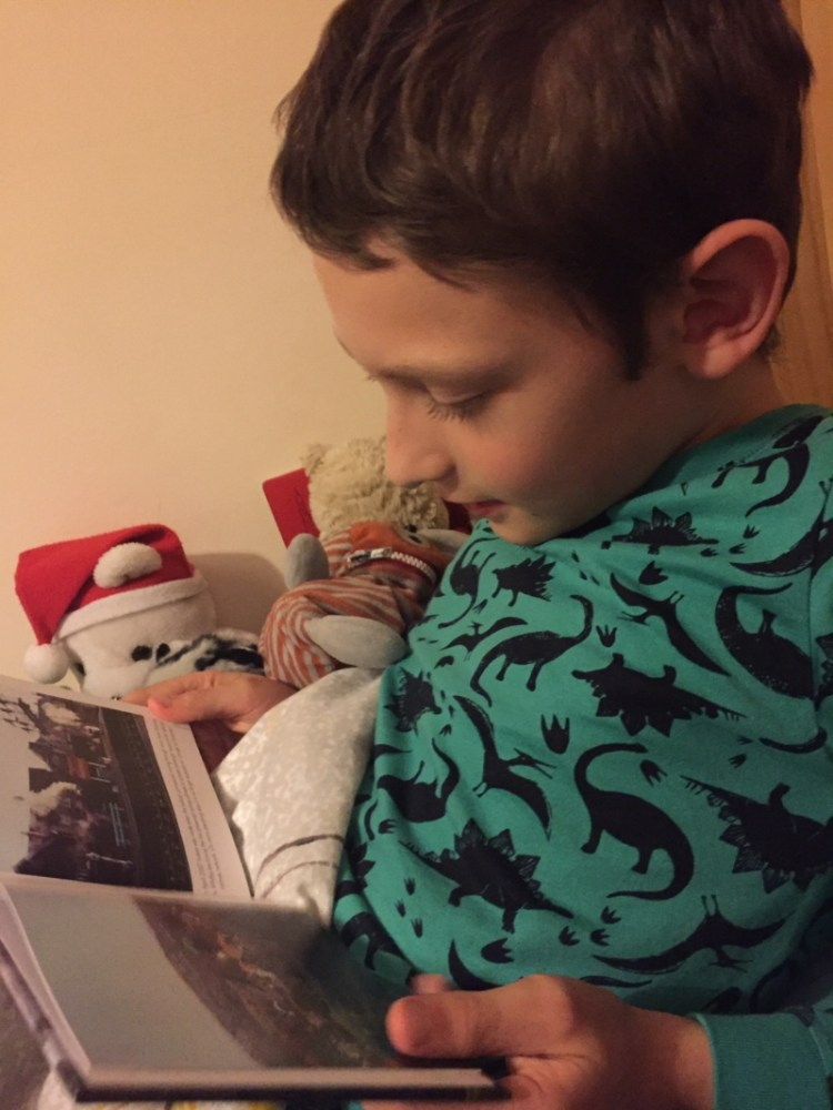 An update on my reluctant reader