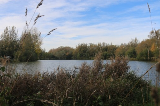 Exploring a walk by the Cotswold Water Park