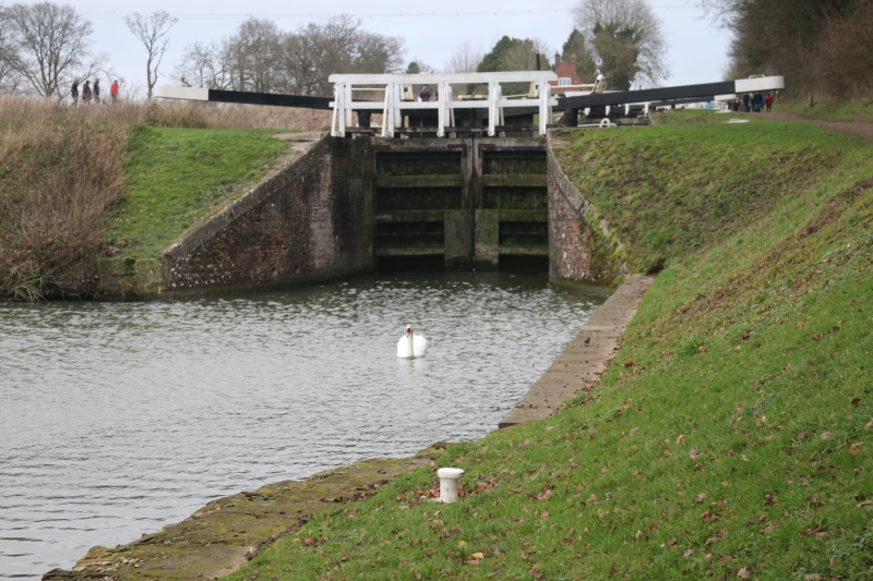 Exploring Caen Hill Lock Flight