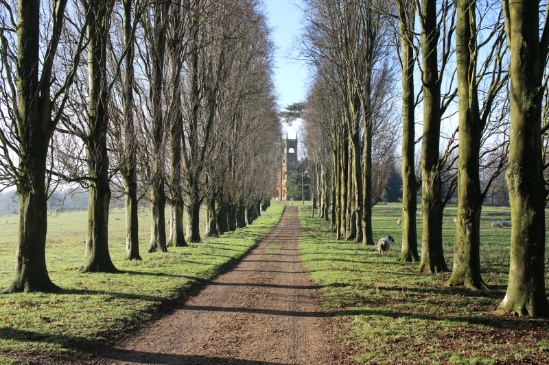 Exploring the Stowe Parkland