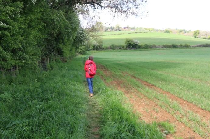 walking in a field