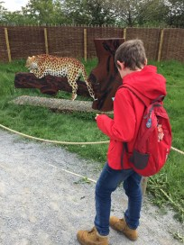 Lego Leopard