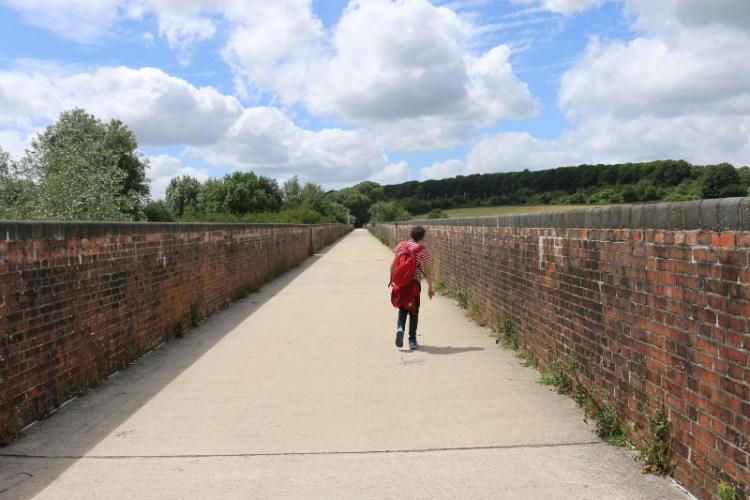 Exploring the Hockley Railway Viaduct Walk