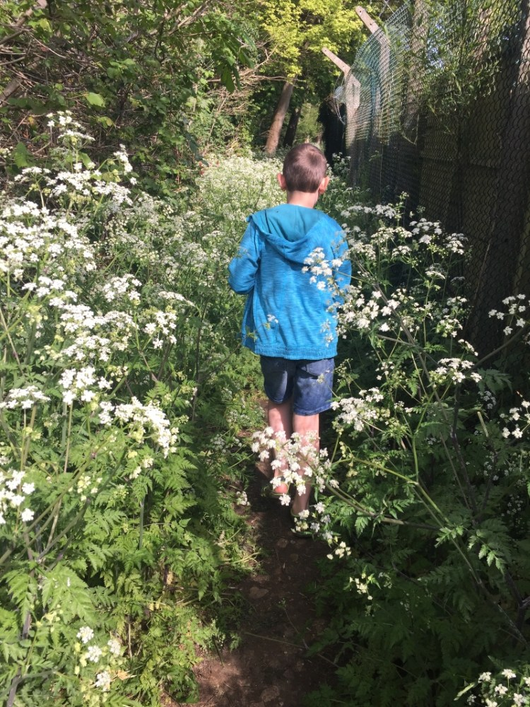 Exploring footpaths on our doorstep - Caversfield