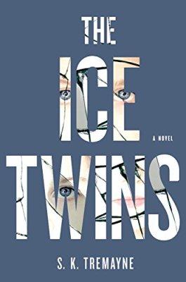 Ice Twins: A Novel