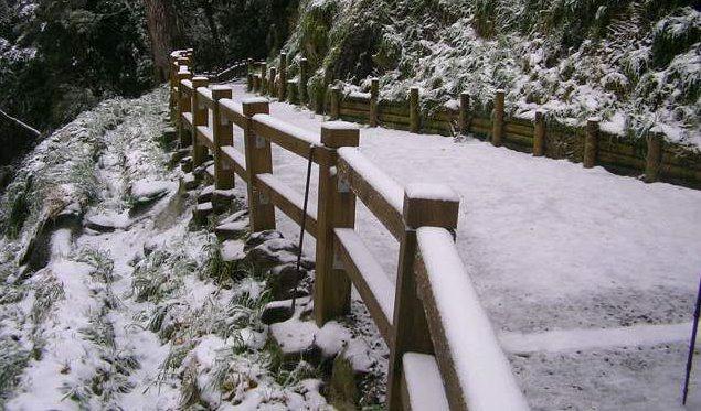 拉拉山賞雪