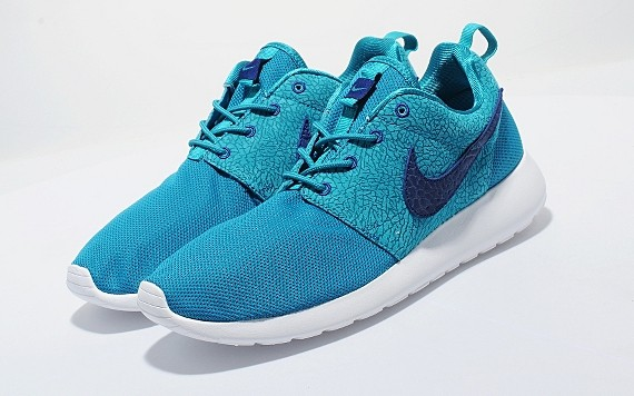size-nike-roshe-run-cement-collection-6