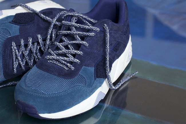 bwgh-puma-the-bluefield-project-3