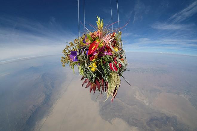 azuma-makoto-sends-plants-to-space-2
