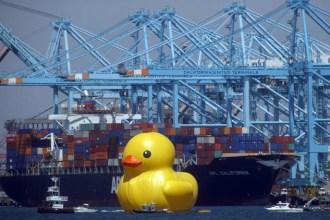 florentijn-hofmans-giant-rubber-duck-makes-its-way-to-los-angeles-1
