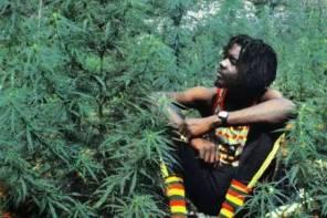 一些你不知道的「大麻葉」文化