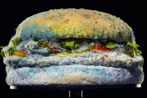 漢堡王的「發霉漢堡」才是最好吃的?