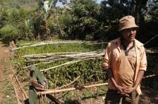 etiyopya-burtukaana (8)