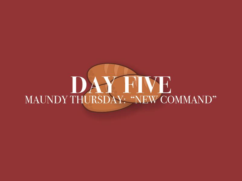 Day Five Thumbnail Edit