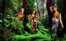 Jungle-January-2015_1600x1000