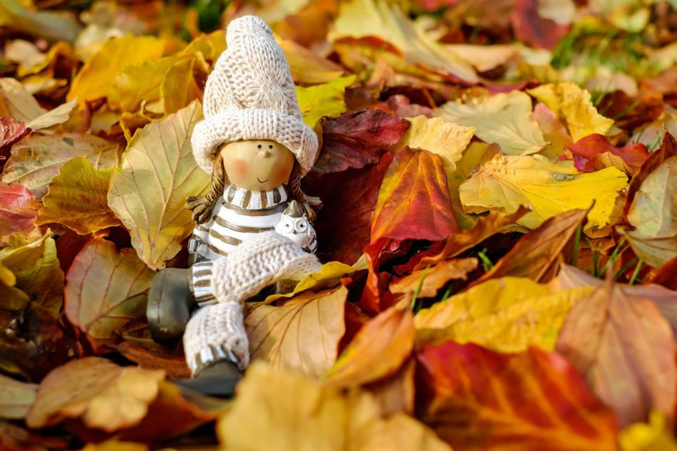 pop herfstbladeren