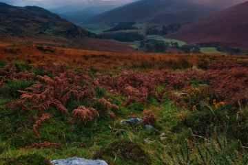 factss about ireland emberald isle