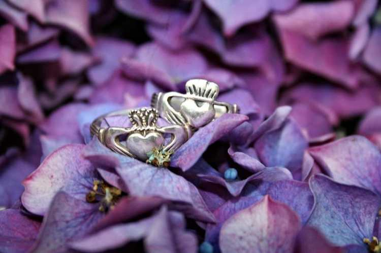 picture of claddagh rings