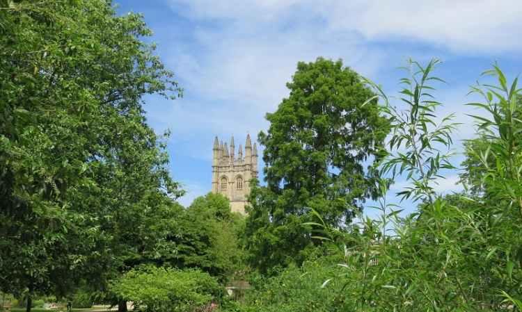 image of   Magdalene Tower