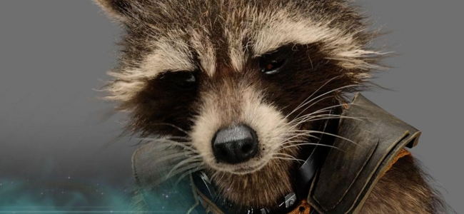 5 Reasons Why Rocket Should be Your Favourite Guardian (Contains Spoilers!!!)