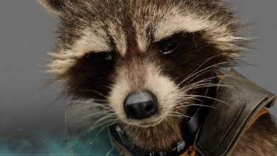 Photo of 5 Reasons Why Rocket Should be Your Favourite Guardian (Contains Spoilers!!!)