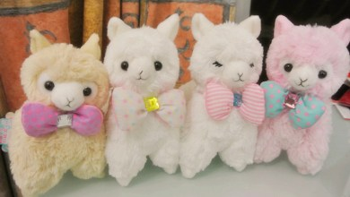 Photo of The Story behind Those Adorable Alpacas You Keep Seeing at Conventions