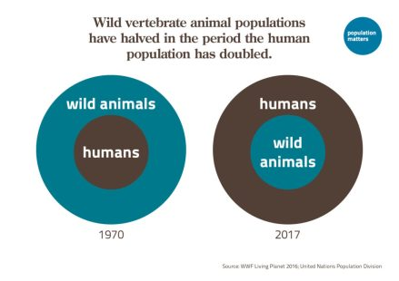 Wild vertebrate animal population have halved in the period the human population have doubled
