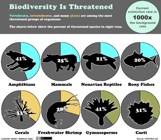 The Biodiversity is threatened