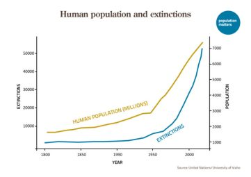 Human population and extinctions of non human species - a coincidende?