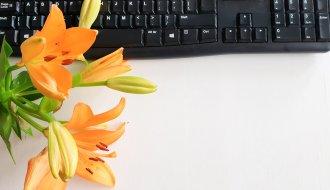 bloggen als schrijver