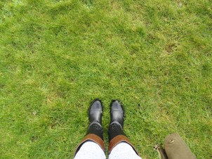 To show my father how green the grass is in Ireland