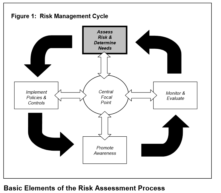 riskmanagementcycles