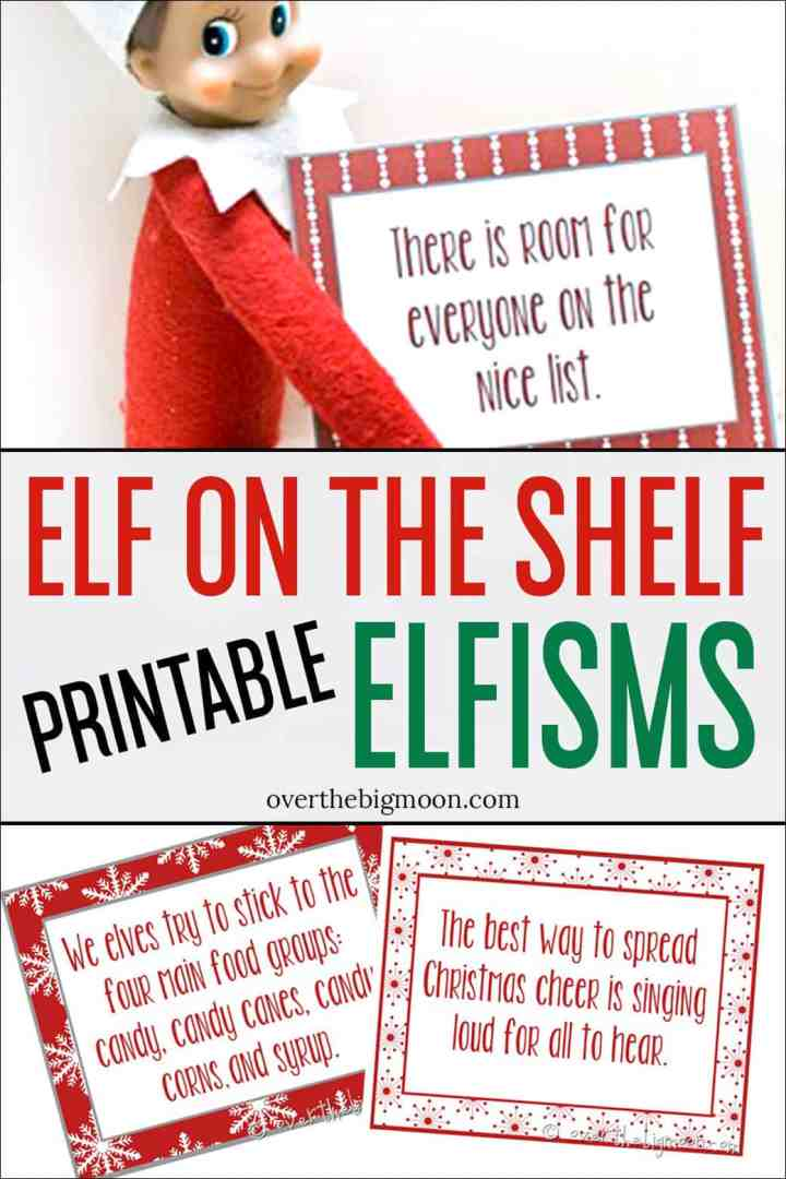 Elf on the Shelf Printable Elfisms - download the free set of Elfisms for your Elf to bring to your family! From overthebigmoon.com!