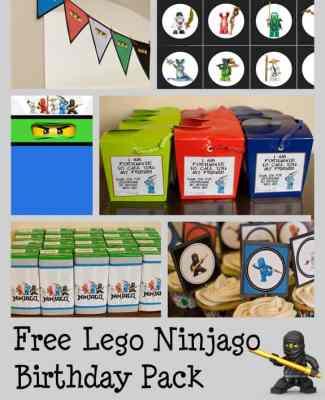 Ninjago Birthday Party with Free Printables