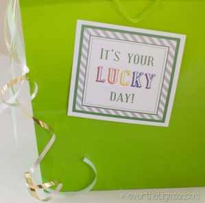 Saint Patrick's Day Surprise Bag: It's Your Lucky Day