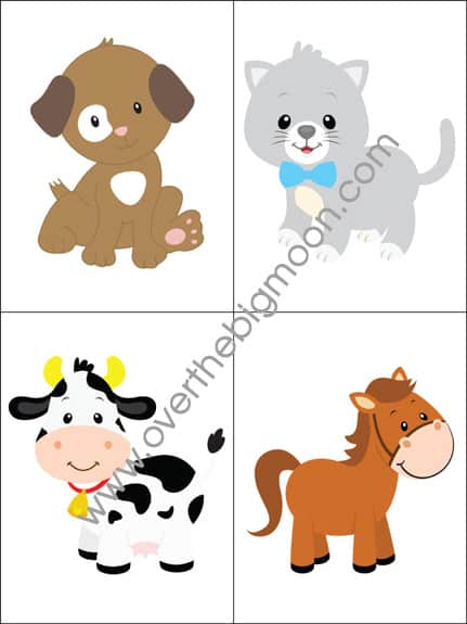 Toddler Flash Cards - Body Parts, Colors/Shapes and Animal Sounds