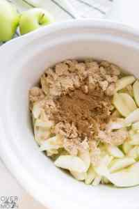 Spices and sugar in apples! From overthebigmoon.com!