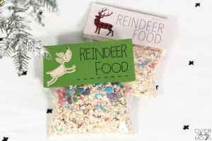 Reindeer Food - this magical mixture if the perfect gift to put out for Santa's Reindeer on Christmas Eve! Recipe and bag toppers - from overthebigmoon.com!