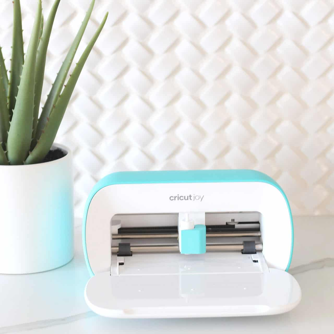 Cricut Joy machine open on white countertop with an aloe plant next to the machine.