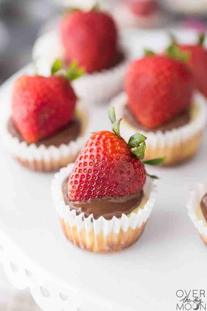 Chocolate Strawberry Mini Cheescakes