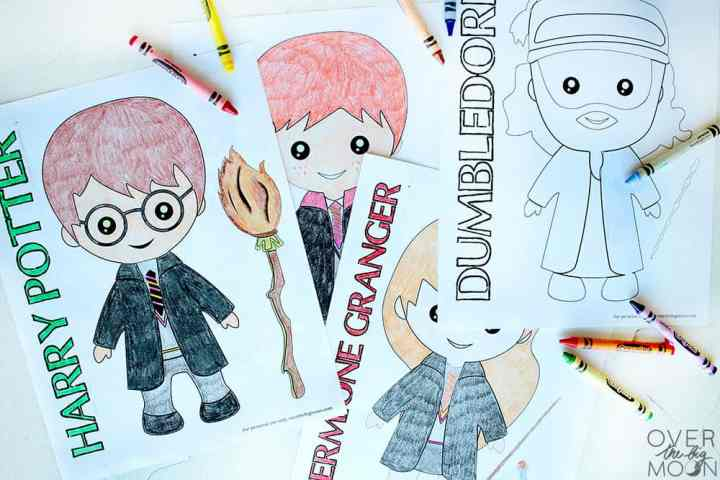 Harry Potter, Ron Weasley and Hermione Granger and Dumbledore coloring pages
