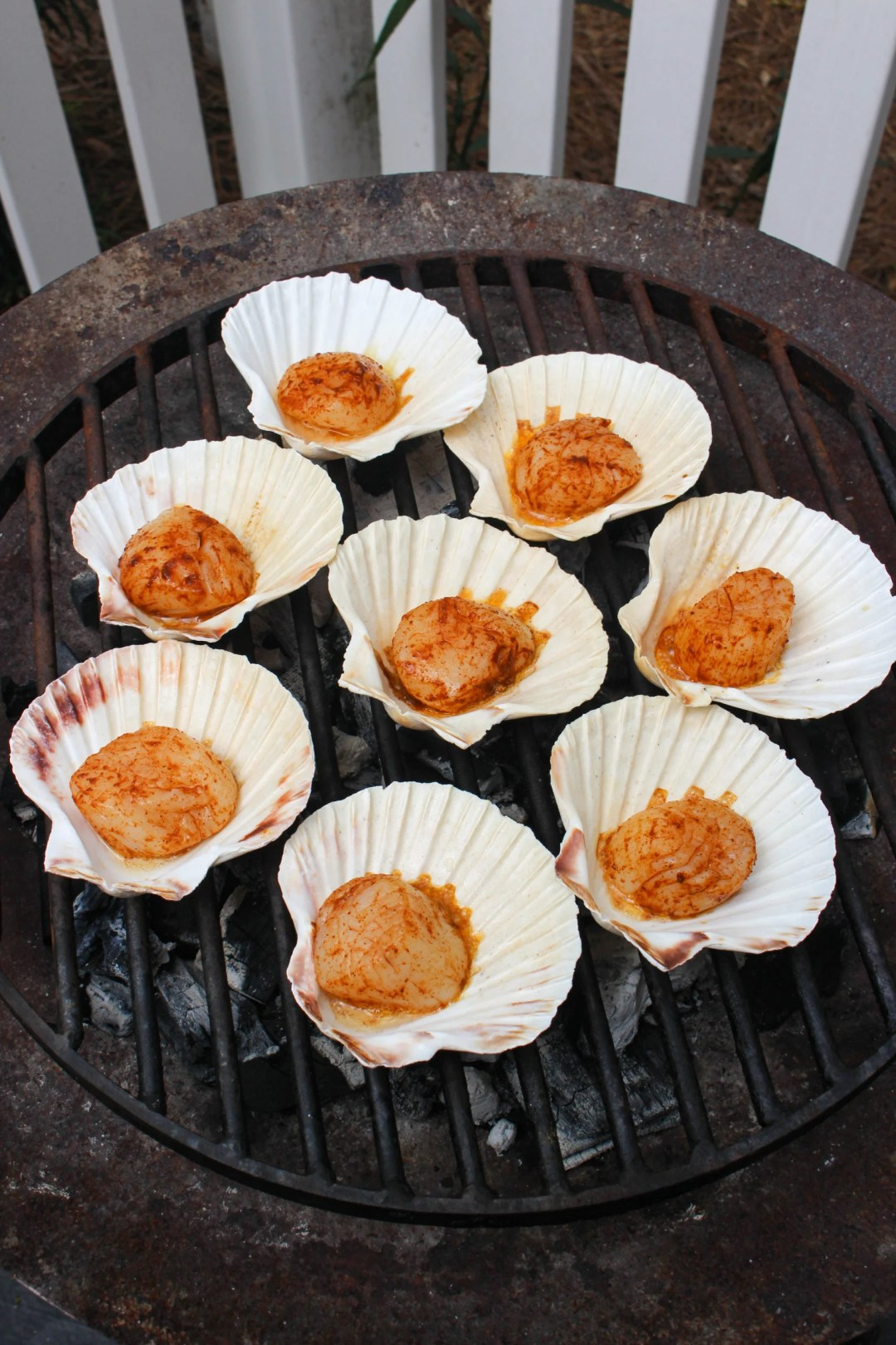 Grilled Scallops in the Shell