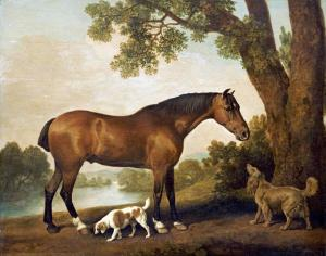 Horse in a pastoral setting with a spaniel and a setter