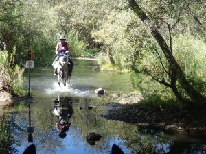 Woman riding horse across water